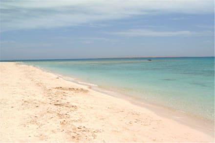 Ausflug zu Mahmia-Island - bzw. Paradise Island - Giftun / Mahmya Inseln