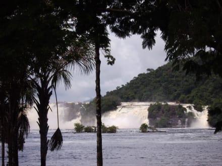 Canaima Wasserfälle - Wasserfälle von Canaima - Salto Sapo