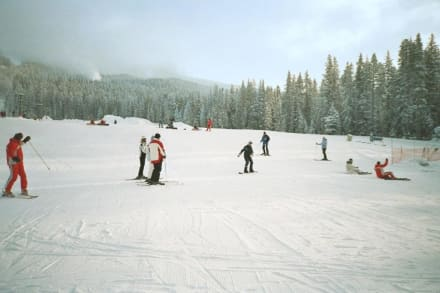 Sunny T - Bar - Skigebiet Lake Louise