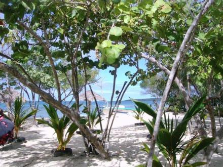 Am Kleinen Stranhaus - Paradies Insel