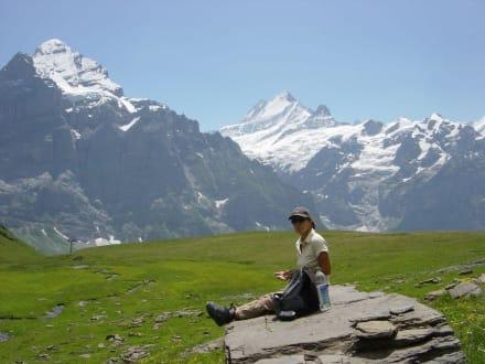 Grosse Scheidegg - First - Grosse Scheidegg