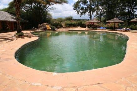 Amboseli Lodges Hotels Hotel Amboseli Sopa Lodge