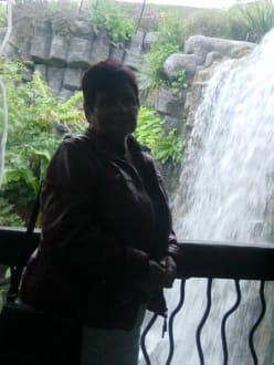 Am Wasserfall - Palma Aquarium