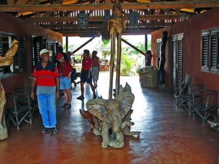 Safari-Shop - Curacao - Safari - Tour