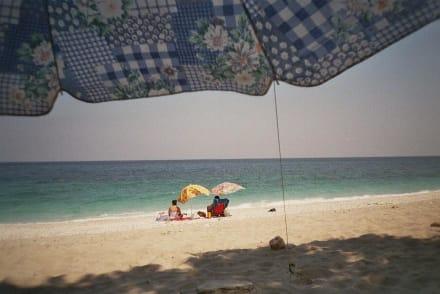 Schattenplätze am Korasida-Strand im Osten Evias - Strand Korasida