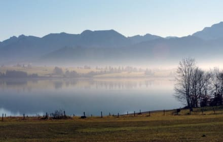Frühmorgens am Forgensee. - Forggensee