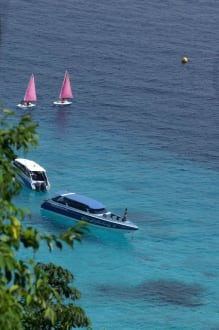 Klares Wasser - Similan Islands