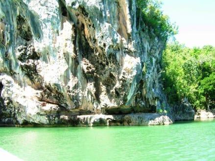 Felsen im Naturpark - Mangrovenflussfahrt