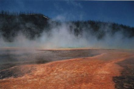 Geysir - Yellowstone Nationalpark