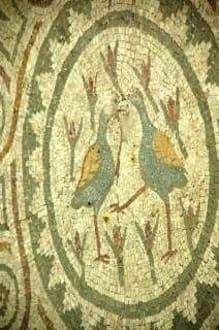 Mosaik mit Vogelmotiv in Arykanda - Arykanda