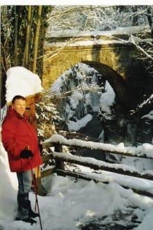 Alte Römersteinbrücke - Kurort Bad Vigaun