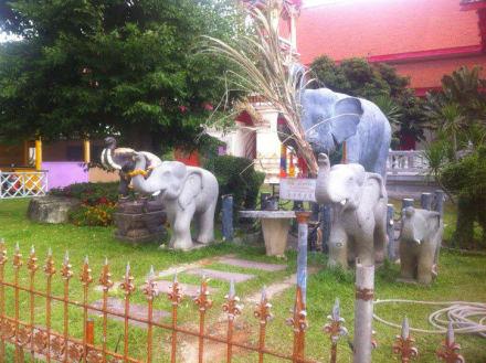 Grünanlage - Wat Suwan Khirikhet