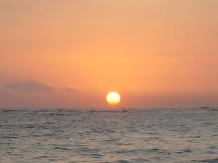 Strand von Punta Cana / Dominikanische Republik. - Strand Punta Cana