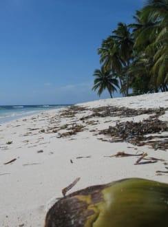 Insel Saona III - Isla Saona