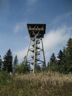 Der Riesenbühlturm - Riesenbühlturm
