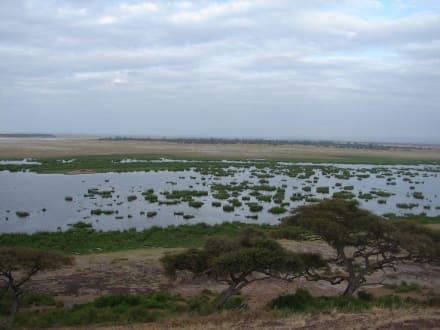 Amboseli - Amboseli Nationalpark