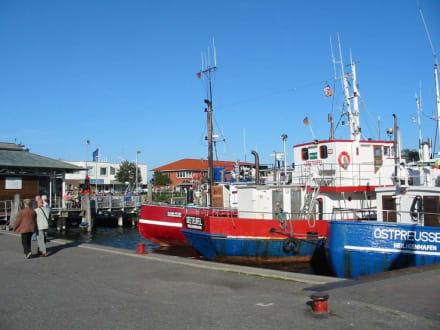 Kommunalhafen - Yachthafen Heiligenhafen