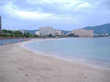 Strand von Palma Nova - Strand Palma Nova
