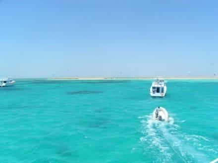 Weg zur Paradiese Insel - Giftun / Mahmya Inseln