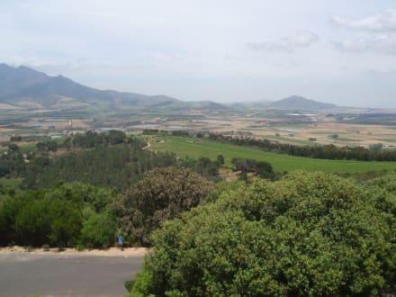 Weingebiet Stellenbosch - Weingebiet Stellenbosch