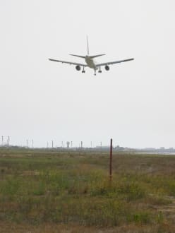 Landendes Flugzeug - Flughafen Palma de Mallorca/Son Sant Joan (PMI)