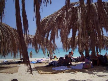Traumstrand auf Mahmya - Giftun / Mahmya Inseln