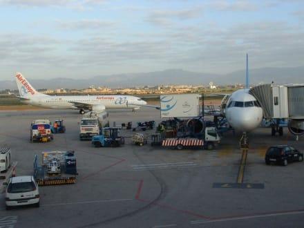 Flughafen - Flughafen Palma de Mallorca/Son Sant Joan (PMI)