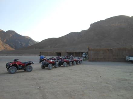 Quadtour - Quad Tour Safaga