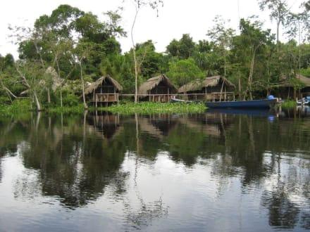 Orinoco- Tour - Orinoco Delta