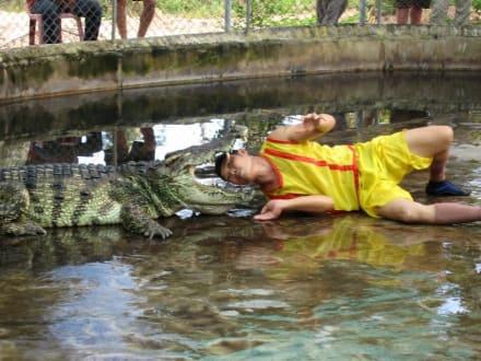 Krokodilshow - Krokodilshow