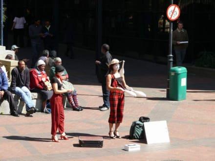 Leben in der City - Stadtrundfahrt Kapstadt