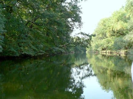 Ropotamo-Fluß Nationalpark - Ausflug - Das andere Bulgarien