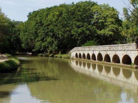 Canal du Midi  - Canal du Midi
