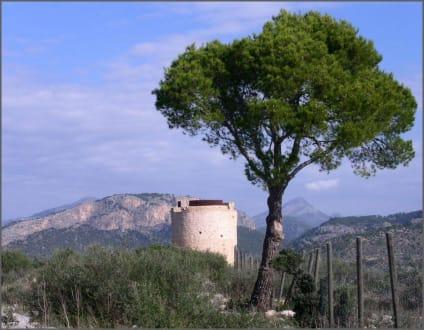 Wachturm auf dem Weg zum Cap Andritxol - Wandern Paguera