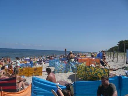 Plaża/Wybrzeże/Port - Mrzeżyno