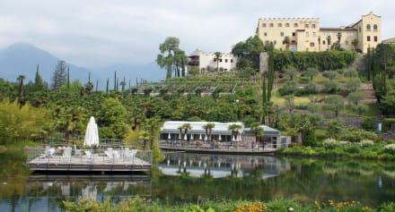 Ruheoase im botanischen Garten - Die Gärten von Schloss Trauttmansdorff