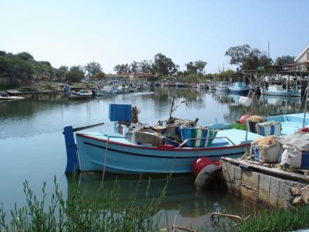 Fischerhafen - Fischereihafen Ayia Napa/Agia Napa