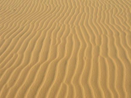 Waschbrett - Sanddünen