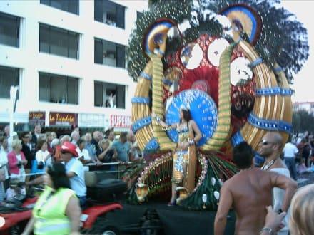 Karneval 2007 - Umzug - Karneval Maspalomas