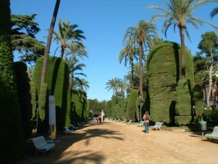 Park in Cadiz - Parque Genovés
