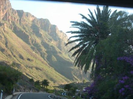Autofahrt - Bergwelt
