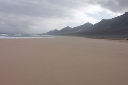 Am Strand der Westküste - Westküste