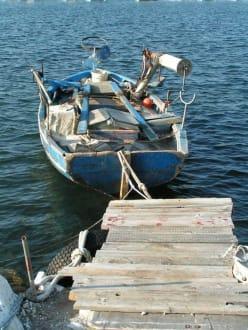 Hafen von Skala Rachoni - Inselrundfahrt