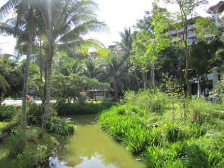 Hotel Maritim Park Spa Resort Krabi