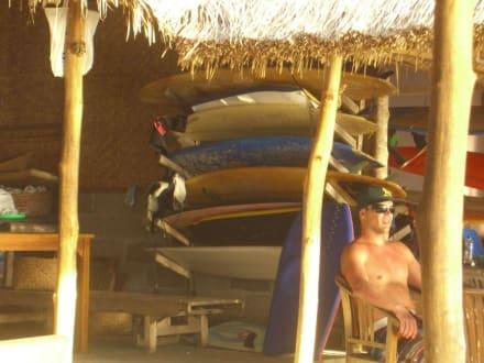 Surferstyle - Dreamland Beach