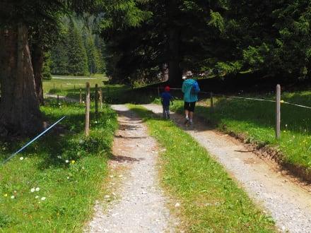 Lenzerheide Wandern - Lenzerheide Wandern