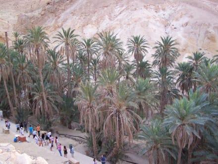 Bergoase - 2 Tages-Tour Süd-Tunesien