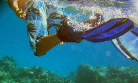 Schnorcheln vor Little Magawish Island - Schnorcheln Magawish Riff Hurghada