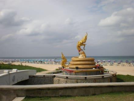 Schlange am Karon Beach - Strand Karon