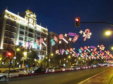 Weihnachten in Malaga - Touren & Ausflüge